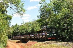 Jungle train in the Iguazu Falls