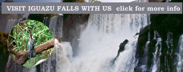 Learn about nature at Iguazu Falls